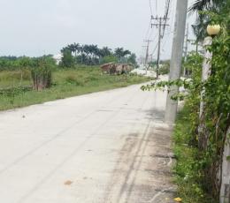 Đất mặt tiền sau chợ Long Phước